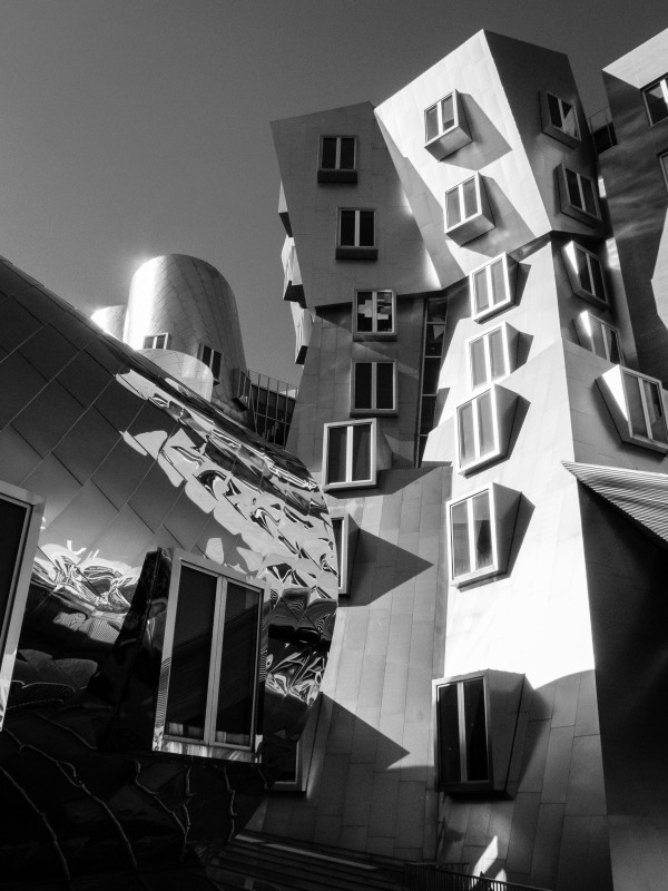 MIT Boston – Frank Gehry
